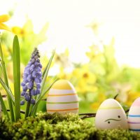 Easter Time Hotel Ruia
